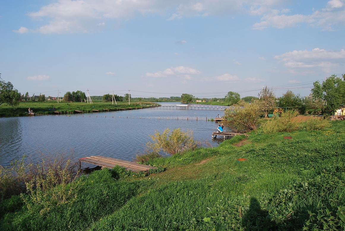 рыболовные места в одинцовском районе